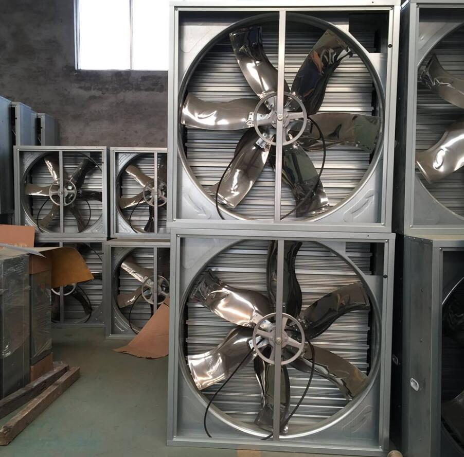 Hammer (Type) Exhaust Fan/Ventilation Fan